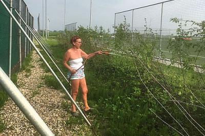 Beplanting windwal extra beregend